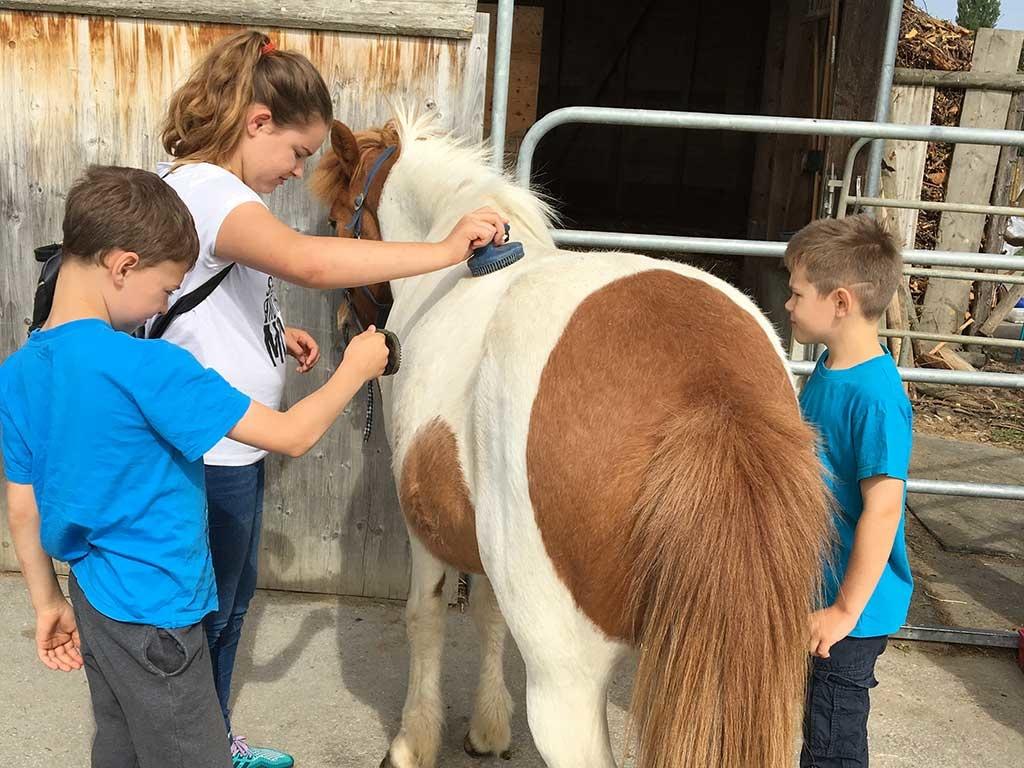Mit Tieren zusammen sein zu dürfen ist immer wieder ein schöner Moment für unsere Kinder, denen der Krebs so einiges an Selbstverständlichem genommen hat.